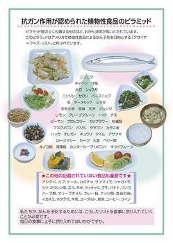 ガン予防のデザイナーフーズピラミッド2.jpg